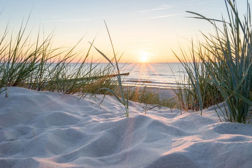 Sunset at beach with seagrass and sand dunes
